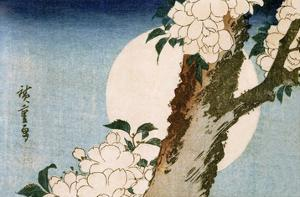 Flowering Cherry Tree and Full Moon by Utagawa Hiroshige
