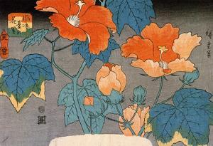 Utagawa Hiroshige Hibiscus