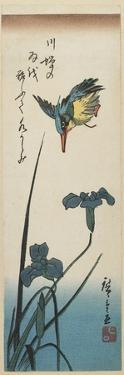 Iris and Kingfisher, 1843-1847 by Utagawa Hiroshige