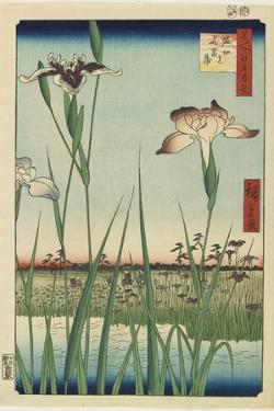 Iris Garden at Horikiri, May 1857 by Utagawa Hiroshige