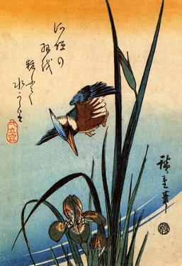 Utagawa Hiroshige Kingfisher Bird and Lilies