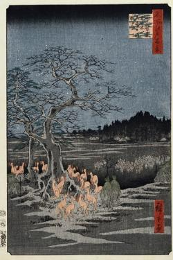 New Year's Eve Foxfires at the Nettle Tree, Oji', from the Series, 'One Hundred Famous Views of Edo by Utagawa Hiroshige