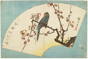 Parrot on a Flowering Plum, Mid 19th Century by Utagawa Hiroshige