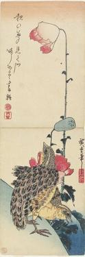 Quail and Poppies, 1830-1858 by Utagawa Hiroshige