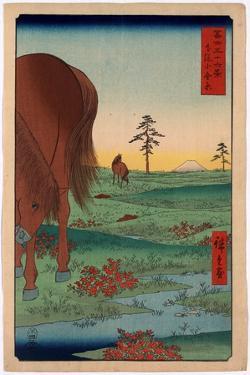 Shimosa Koganehara by Utagawa Hiroshige