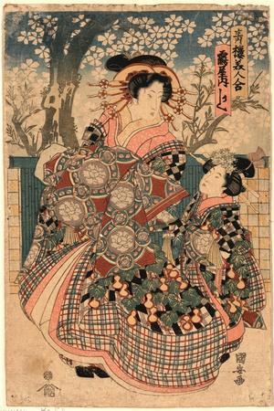 Tsuruya Uchi Kashiku