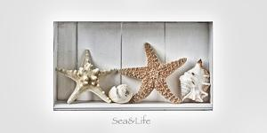 Maritime Still Life by Uwe Merkel