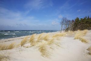 Dunes on the Western Beach of Darss Peninsula, by Uwe Steffens