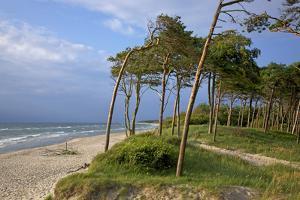 Evening on the Western Beach of Darss Peninsula by Uwe Steffens