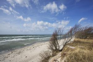 Stormy Day on the Western Beach of Darss Peninsula by Uwe Steffens