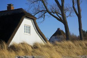 Thatched Beach House under the Big Poplars in Ahrenshoop by Uwe Steffens