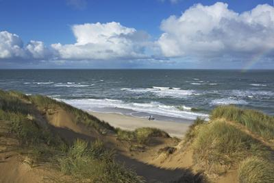 View to the North Sea from the Dunes at the 'Rotes Kliff' Near Kampen on the Island of Sylt
