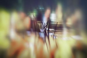 Pond life by Valda Bailey