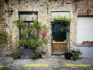 Urban Oasis by Valda Bailey