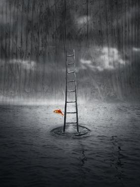 Climb Up by ValentinaPhotos