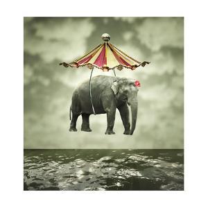 Fanciful Elephant by ValentinaPhotos