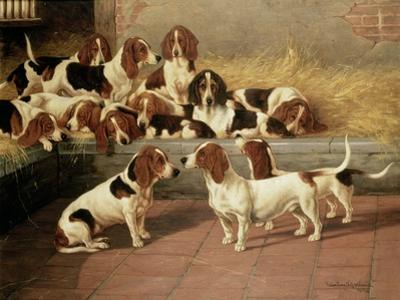 Basset Hounds in a Kennel, 1894