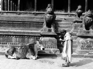 Nepal Patan by Valentine Ward Evans