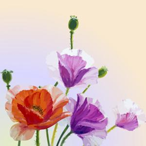 Oil Painting. Spring Card with Poppies Flowers by Valenty