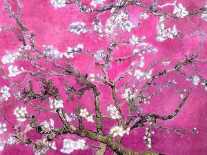 Van Gogh Almond Branches Pink Art Print Poster