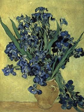 Van Gogh, Irises(1890)