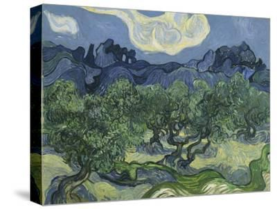 Van Gogh, Olive Trees