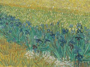 Field With Irises Near Arles - Focus by Van Gogh Vincent