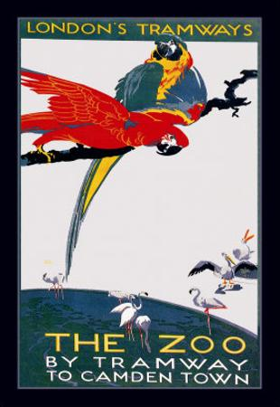 The London Zoo: The Macaw by Van Jones
