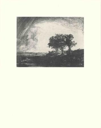 Three Trees by Van Rijn Rembrandt