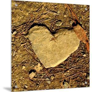 Heart of Stone by Vanesa Munoz
