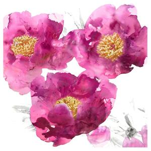 Pink Bloom II by Vanessa Austin