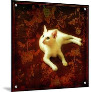 White Cat Tapestry by Vanessa Ho