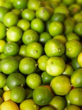 Variety of Fresh and Juicy Citrus Fruits