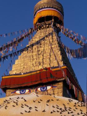 Swayanbunath, Kathmandu, Nepal by Vassi Koutsaftis