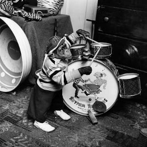 Monkey Drummer by Vecchio