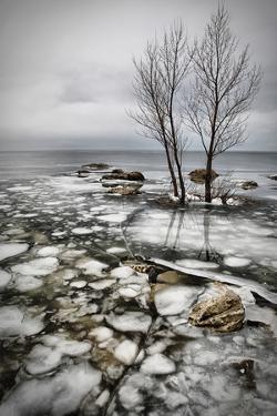 Frozen Lake by Vedran Vidak