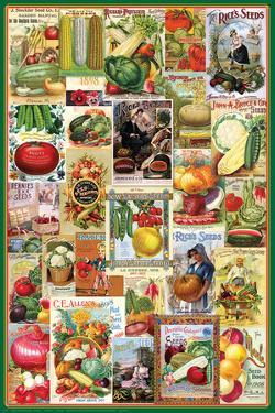 Vegetables Seed Packet Collage
