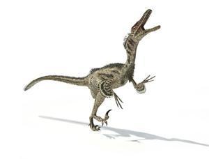 Velociraptor Dinosaur, Artwork
