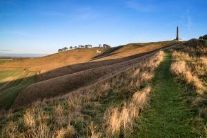 Ancient Chalk White Horse in Landscape at Cherhill Wiltshire England during Autumn Evening by Veneratio