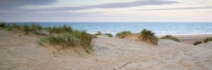 Panorama Landscape of Sand Dunes System on Beach at Sunrise by Veneratio