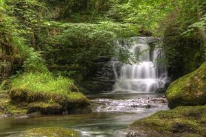 Stunning Waterfall Flowing over Rocks through Lush Green Forest with Long Exposure by Veneratio