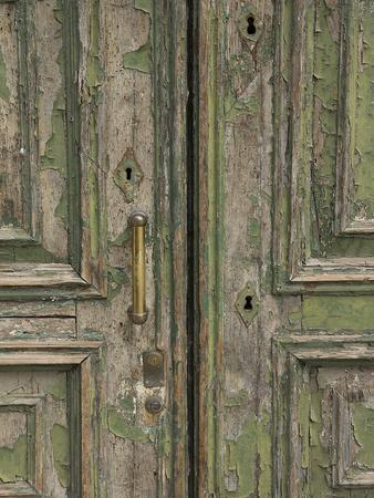 https://imgc.allpostersimages.com/img/posters/venice-green-door_u-L-Q11UDUQ0.jpg?p=0