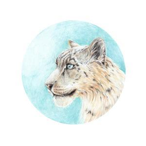 Handmade Painting Colored Pencils Snow Leopard Head by Vensk