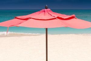 Solo Umbrella by Verne Varona