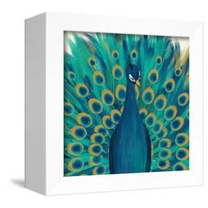 Proud as a Peacock I by Veronique Charron