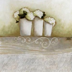 Pots de Jacynthes by Véronique Didier-Laurent