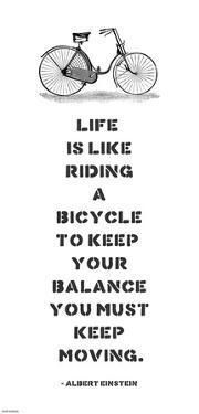 A. Einstein Bicycle Quote by Veruca Salt