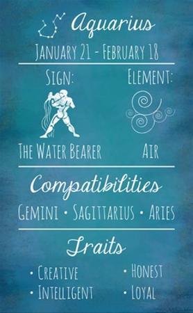 Aquarius Zodiac Sign by Veruca Salt