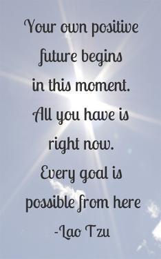 Every Goal Is Possible by Veruca Salt