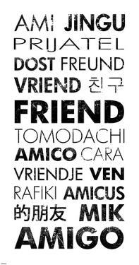 Friend Languages by Veruca Salt